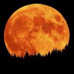Mengapa bulan tampak memerah dan membesar