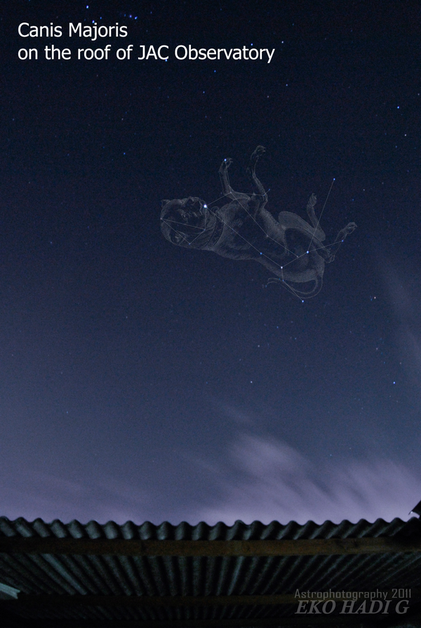 Canis Major on the roof of JAC Observatory