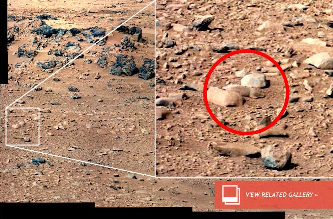 Foto penampakan tikus di planet Mars oleh Curiosity. Sumber : NASA/JPL-Caltech