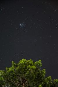 Ketika langit di musim penghujan tampak cerah, Pleiades akan tampak seperti sarang lebah dilangit malam. Sumber : Abu Yahya Jamali 2015.