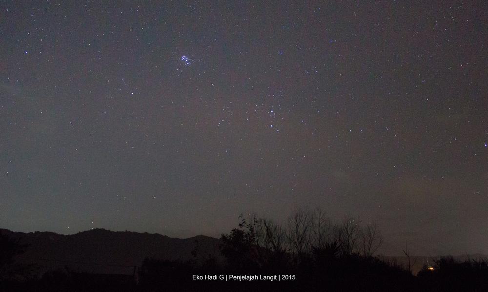 Gugus bintang pleiades tampak seperti sarang lebah di langit. Kredit : Eko Hadi G 2015.