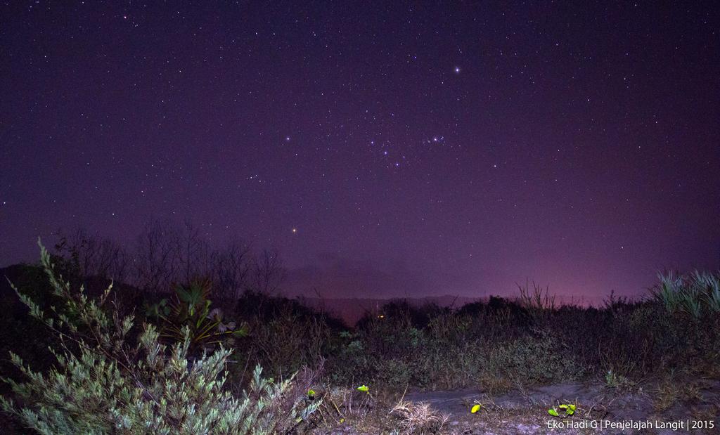 Radian hujan meteor Orionids yakni Rasi orion yang terbit di belahan langit timur. Kredit : Eko Hadi G, Penjelajah Langit